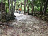 path to the cenote
